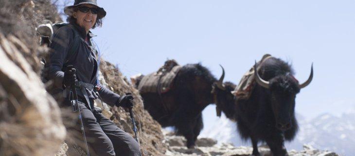 Interview with Bridget Ikin: Sherpa, diversity and Rebel Wilson.