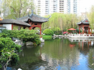 Darling Harbour - Chinese Gardens