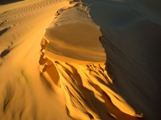 Stockton Beach and Sand Dunes